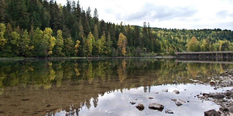 Bridge autumn canada