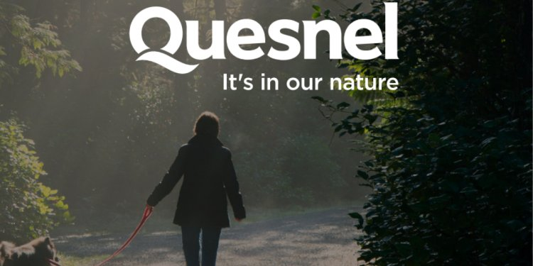 Housing: Quesnel rebrands