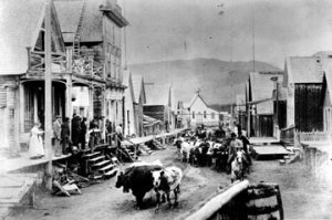 Barkerville Cattle Drive