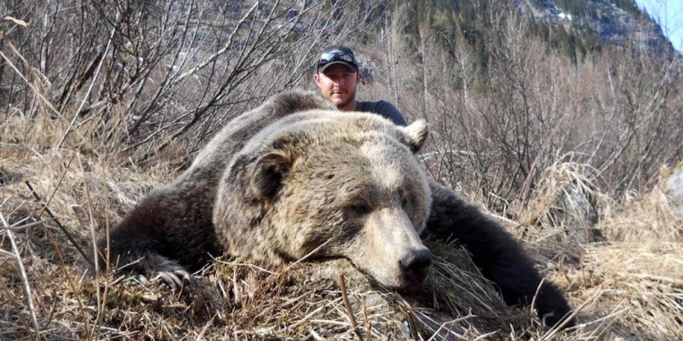 British Columbia bear hunts