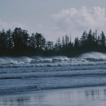 Green Point Campground offers campsites along longer Beach, near Tofino.