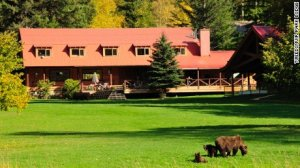 and its historical main lodge, Tweedsmuir Park Lodge features 11 private chalets ... and bears.