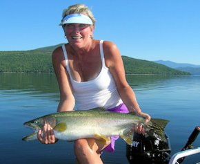 Quesnel Lake Rainbow Trout