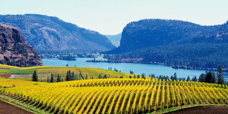 British Columbia Wineries